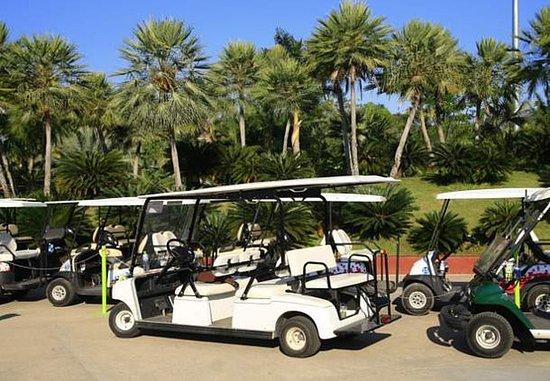 Lady Lake, FL: Golf Cart Parking