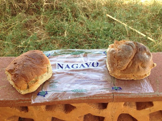 Marsabit National Reserve, Kenya: Delicious bread from Nagayo Bakery on campsite. Ask at reception.