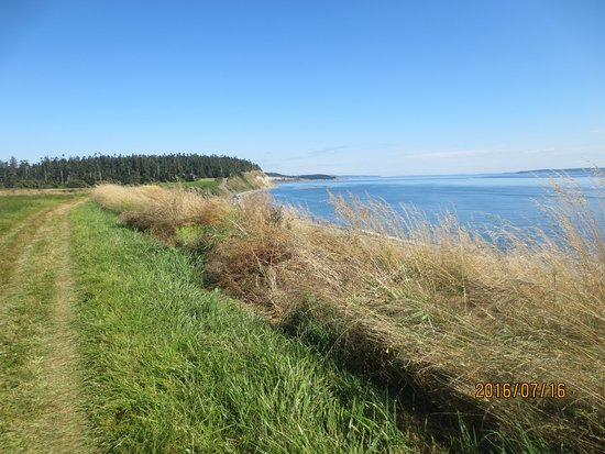 Fort Ebey: easy trail