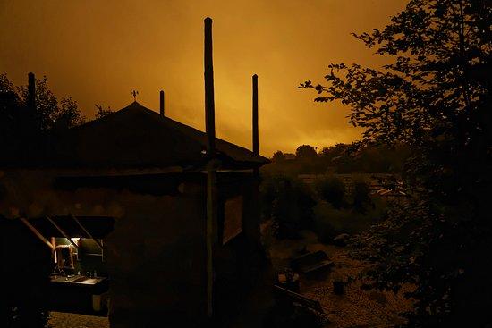 Delfgauw, Holandia: So hell leuchteten die Gewächshäuser nur in dieser nebeligen Nacht. Schaurig schöner Ausblick...
