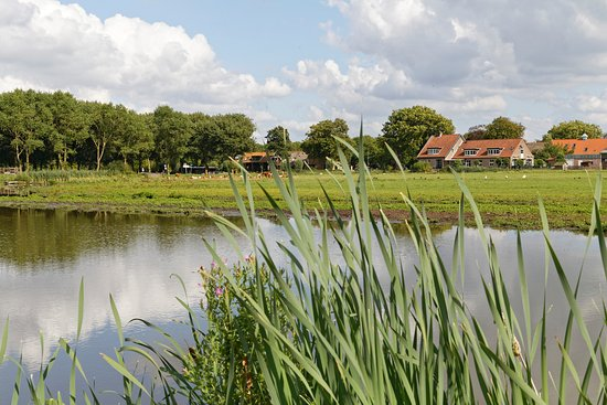 Delfgauw Netherlands  city pictures gallery : Delfgauw Photos Featured Images of Delfgauw, South Holland Province ...