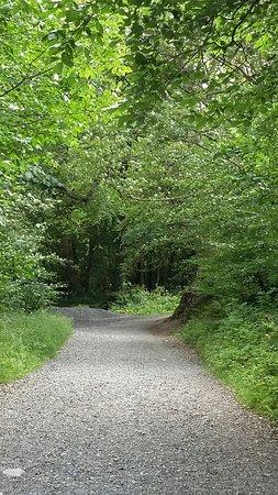 Tuam, Irlanda: 20160809_153529_large.jpg