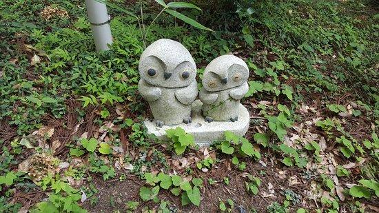 Hitachiomiya, Japón: 20160811_120957_large.jpg