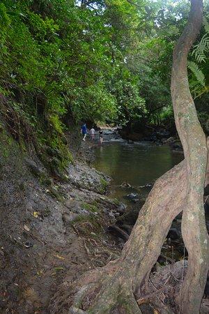The Maidens Falls: Een stukje lopen.
