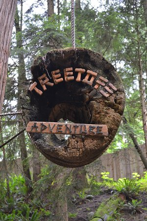 North Vancouver, Canadá: treetops