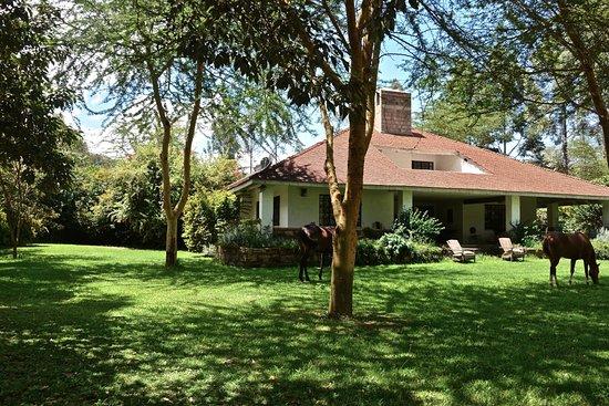 Lucita Farm Guest House