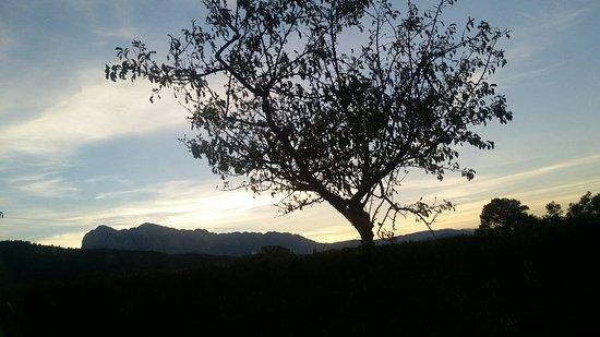 Boltana Photo