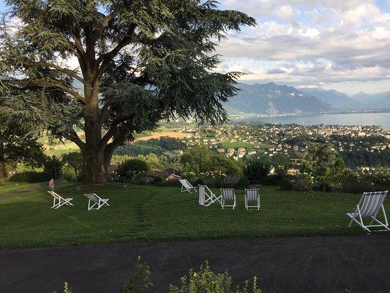 Jongny, Швейцария: photo1.jpg