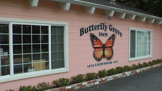 Butterfly Grove Inn