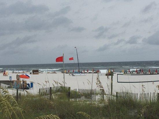 Holiday Inn Express Orange Beach: photo1.jpg