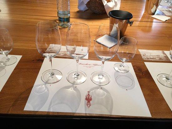 San Martino Alfieri, Ιταλία: Dégustation de vins de la propriété