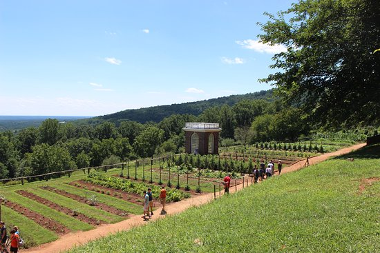 Thomas Jeffersonu0027s Monticello: The Colonial Gardens