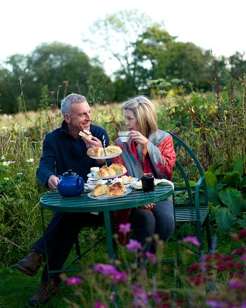 The Kingcombe Centre: Cream teas in the wildlife garden