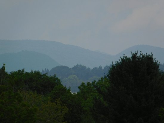 Pittsfield, MA: The grey whales, or Mt. Greylock.