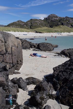 Glenborrodale, UK: A beach not to be missed on travels Sanna Beach
