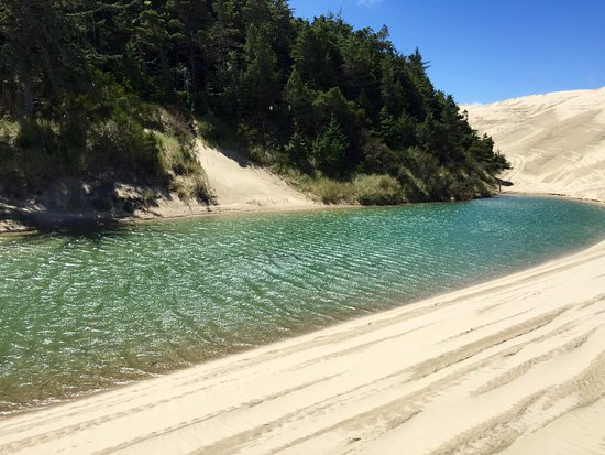 Florence, OR: Natural beauty of Oregon Dunes!