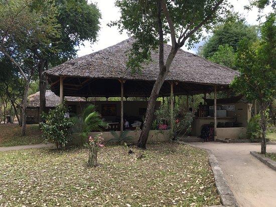 Selous Great Water Lodge: photo3.jpg
