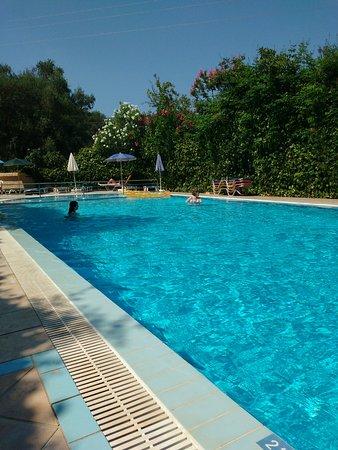 Mayflower Apartments & Studios: Pool