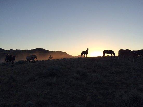 写真7D Ranch枚