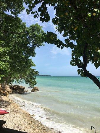 Bluefields, Jamaica: photo5.jpg