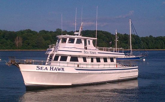 The Sea Hawk Party Boat Fishing