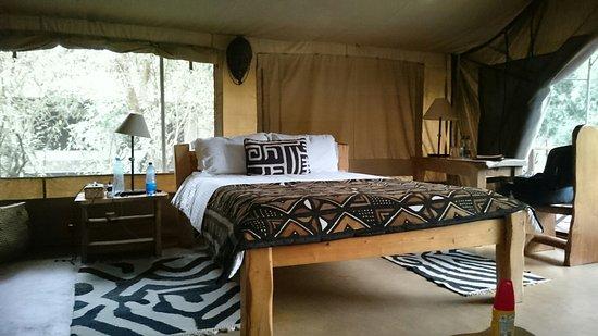 Olumara Camp: Hauszelt und Bar