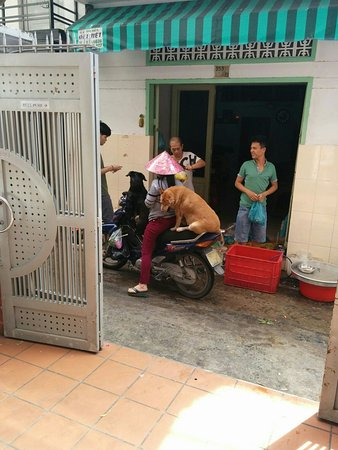 Cat Huy Hotel: IMG_20160811_095300_large.jpg