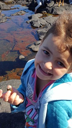 Smith's Cove, Kanada: Alexandria finds joy in a snail!