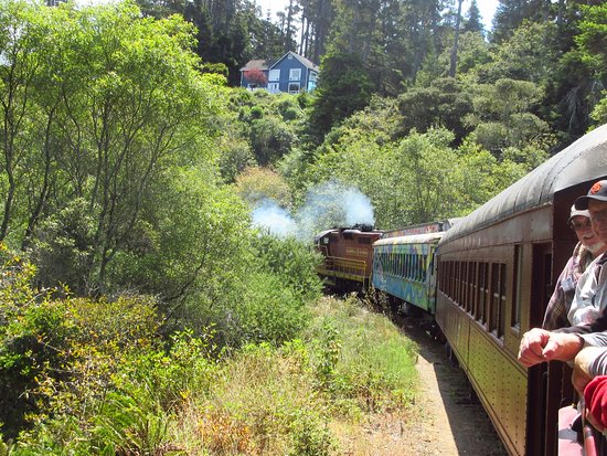 Skunk Train : View from the open car.