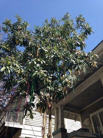 Magazine Street Lemon Tree with Beads