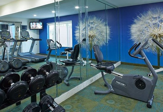 Lithia Springs, Джорджия: Fitness Center – Free Weights