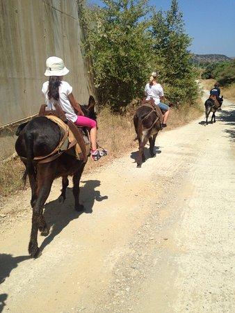 Heraklion Prefecture, Greece: photo1.jpg