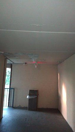 Latham, NY: ceiling