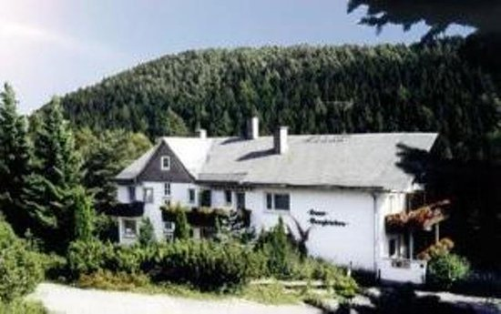 Berghotel-Willingen