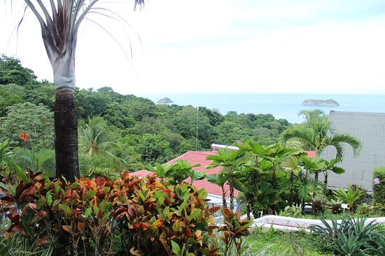 Zdjęcie Hotel Villa Roca