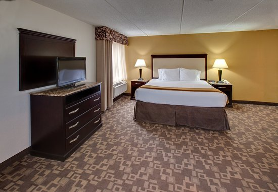 Holiday Inn Express Chicago - Schaumburg : King Bed Suite