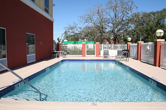 Holiday Inn Express Tampa Fairgrounds : Swimming Pool