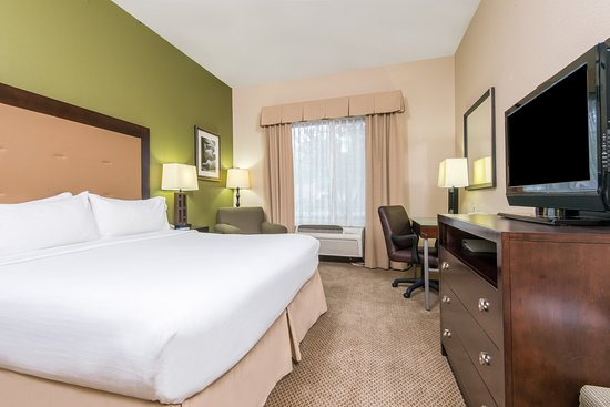 Holiday Inn Express Hotel & Suites Phoenix-Glendale: King Bed Guest Room