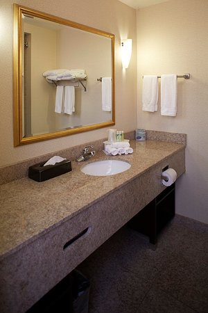 Holiday Inn Express & Suites Orangeburg: Bathroom Amenities