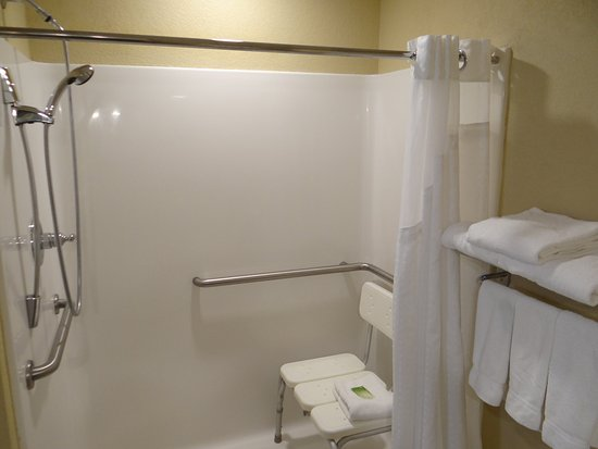 Delmar, MD: Accessible Roll-in Shower