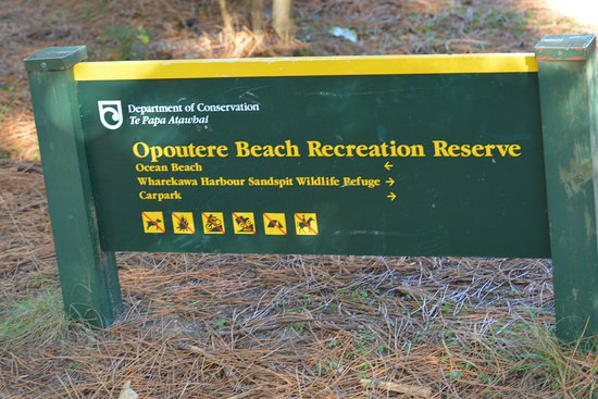 Opoutere Coastal Camping : U R Here