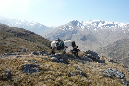 Highland Trekking and Trail Riding