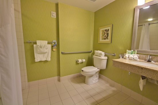 Holiday Inn Express Hotel & Suites New Tampa I-75 Bruce B. Downs: Room 106 - Roll In Shower