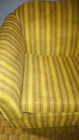 BEST WESTERN PLUS Holiday Sands Inn & Suites: Sofa dentro de la habitacion