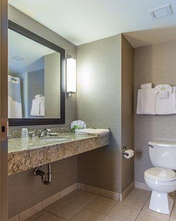 Holiday Inn Express Auburn: Guest Bathroom