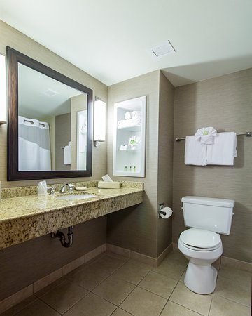 Holiday Inn Express Auburn: Guest Bathroom