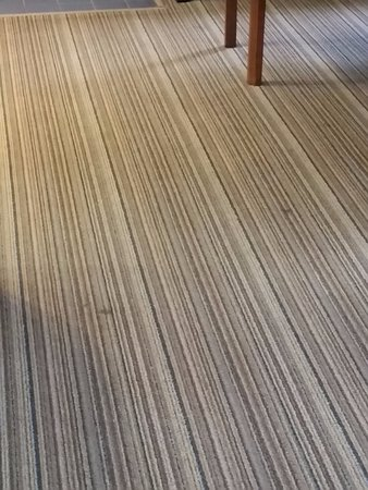 Residence Inn Tysons Corner: Carpet could use a cleaning.