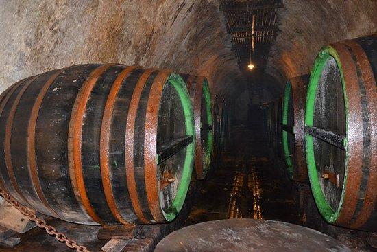 Pilsen, República Checa: Leżakujące piwo