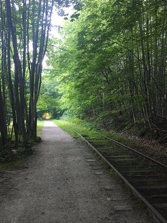 Wolfeboro, NH: Cotton Valley Trail