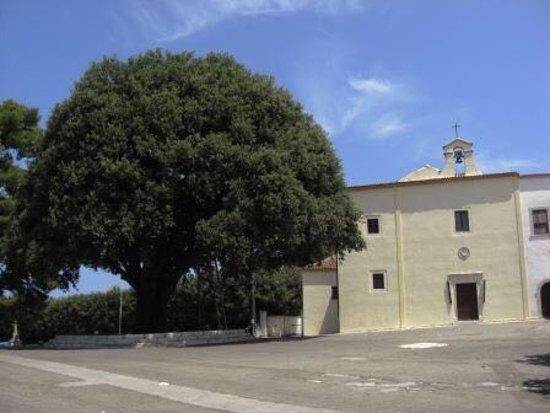 Convento del Santissimo Crocifisso: La quercia e il convento